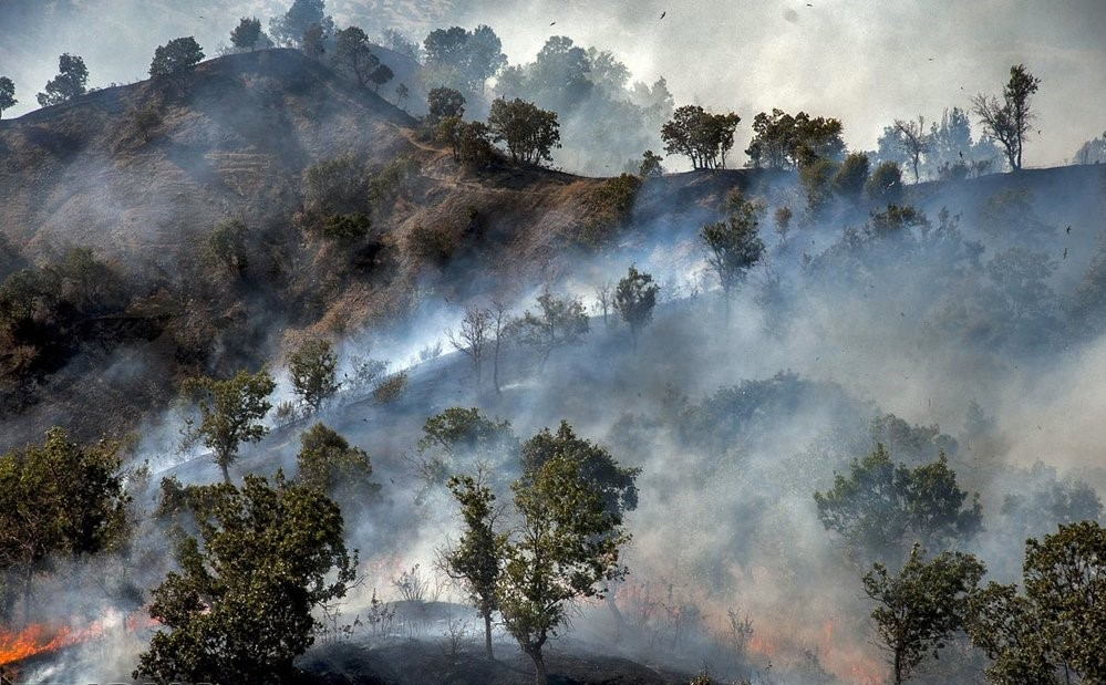 Wildfires in Zagros